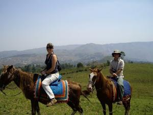 Horse Riding Tour Packages